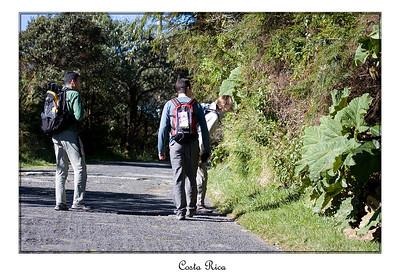Florence, Fabrice et Olivier cherchent des colibris...