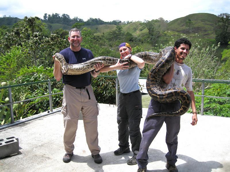 Female Python