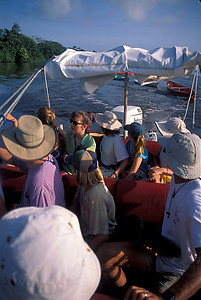 © Joseph Dougherty. All rights reserved.  Research volunteers pull their kayaks to the day's research observation post, Tortuguero National Park, Costa Rica.