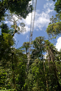 Underneath the Waterfall Bridge - Puente La Catarata; Lenght: 92m, Height: 45m La Fortuna, Arenal, Costa Rica