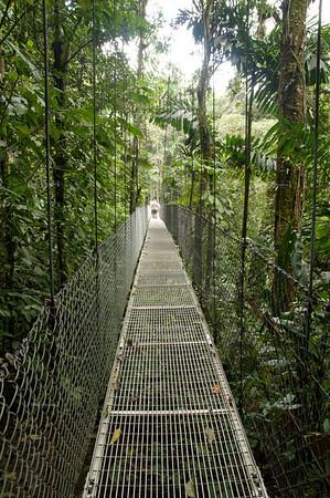 Ant Hill Bridge - Puente Hormiguero; Length: 87m, Height: 28.7m La Fortuna, Arenal, Costa Rica