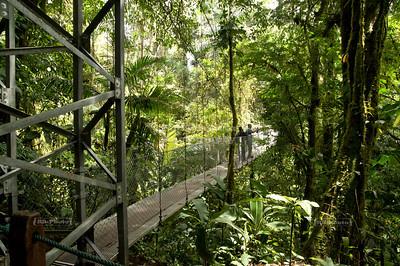 Fer-De-Lance Bridge - Puente Terciopelo; Length: 48m, Height: 24m La Fortuna, Arenal, Costa Rica