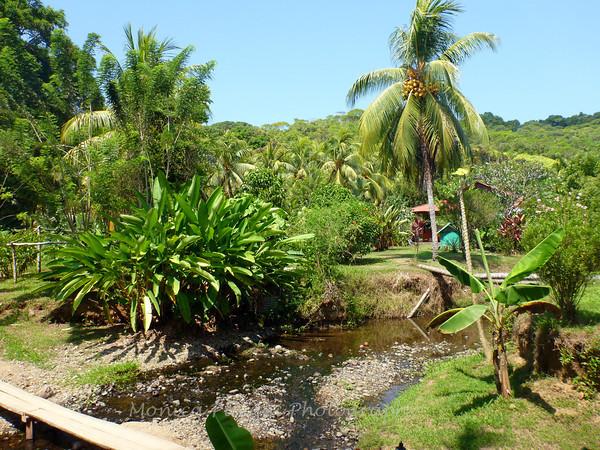 Costa Rica: Part 4