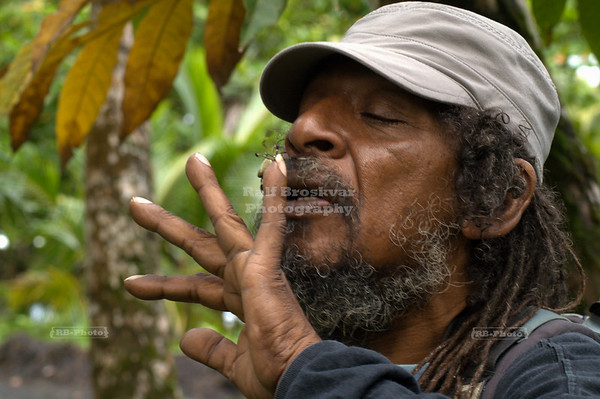 Ricky, the guide, playing with a spider; Gandoca-Manzanillo Wildlife Refuge, Costa Rica