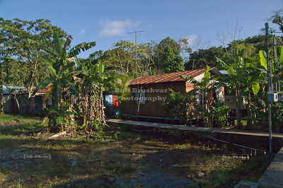 Typical street scene in Turtuguero Village, Costa Rica