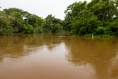 The Rio Frio cuts through the Cano Negro wildlife refuge before it empties into Lake Nicaragua