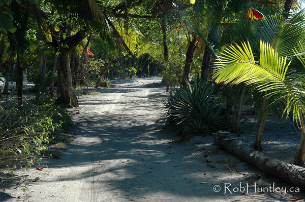 Beachside road near Samara, Costa Rica. © Rob Huntley