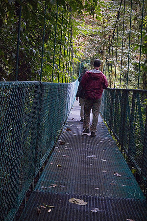 Monteverde Cloud Forest Sky Walk