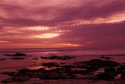 © Joseph Dougherty. All rights reserved.    A Tamarindo sunset during low tide.