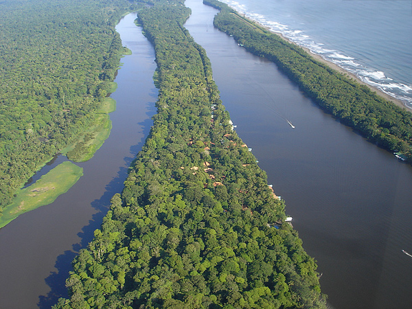 Aerial view of Tortuguero