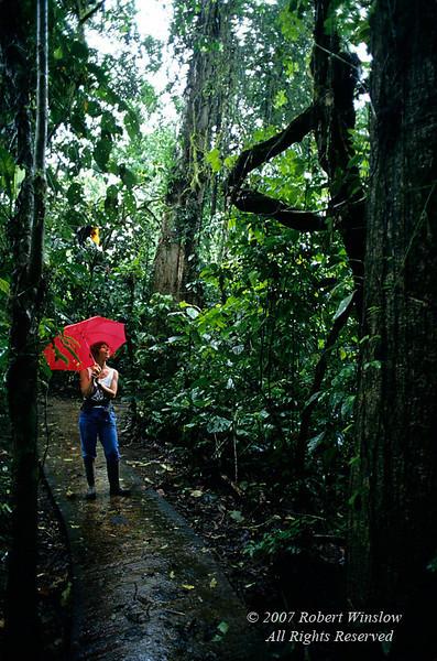 Model Released, Woman Exploring Primary Rain Forest, Rain Forest Vegetation, La Selva Biological Station, Costa Rica, Central America
