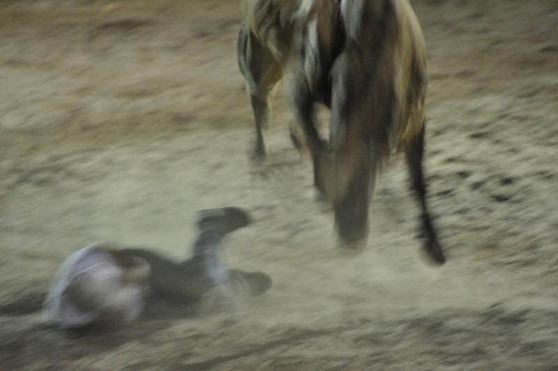 bullfight coming back for another revenge