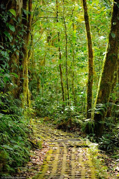 Best of Costa Rica-107