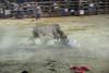 bullfight torero takes another hit