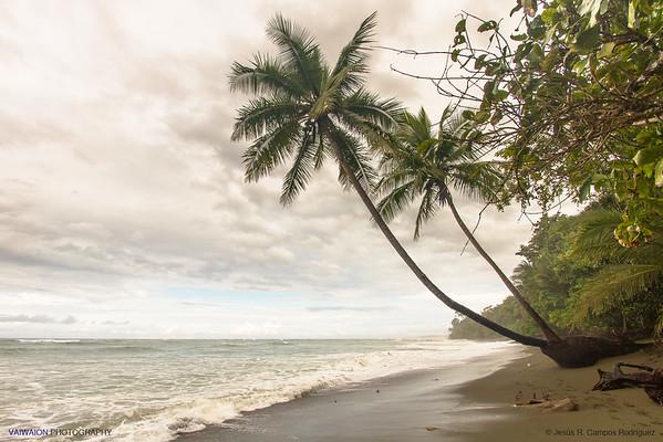 Parque Nacional Corcovado. Costa Rica