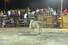 bullfight rider down