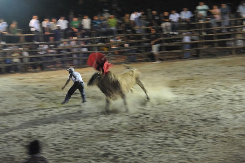 bullfight close moment
