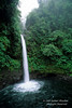 Waterfall, Rain Forest Vegetation, Costa Rica, Central America