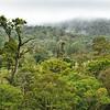 Near Bijuagua