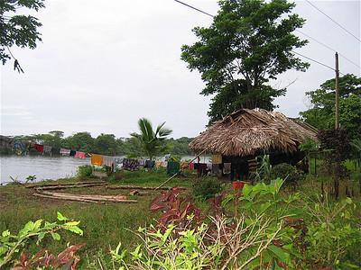 Wasjes. Tortuguero, Costa Rica.