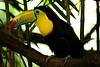 Costa Rica :