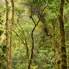 Travel Shots of Costa Rica-214