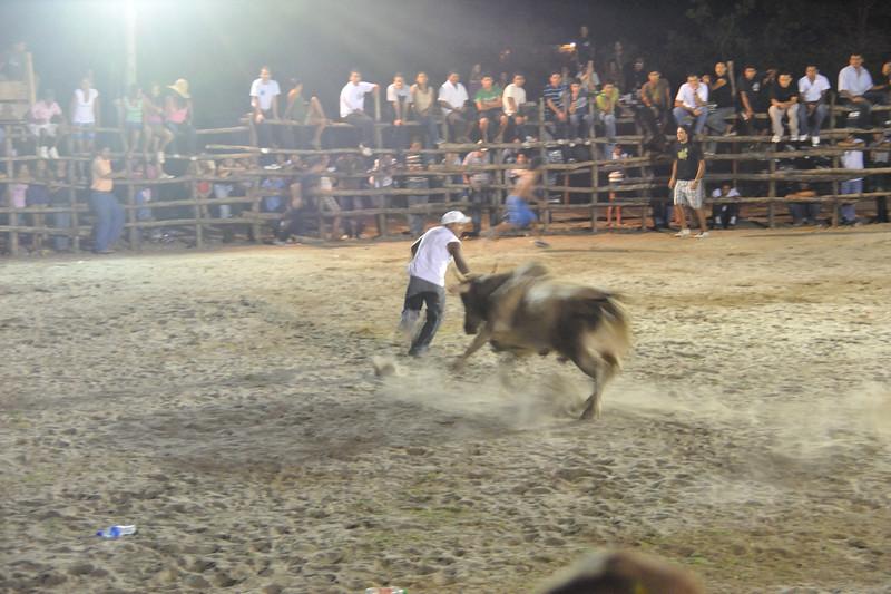 bullfight very close