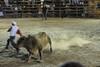 bullfight close call