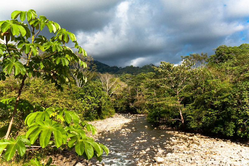 River near Dominical