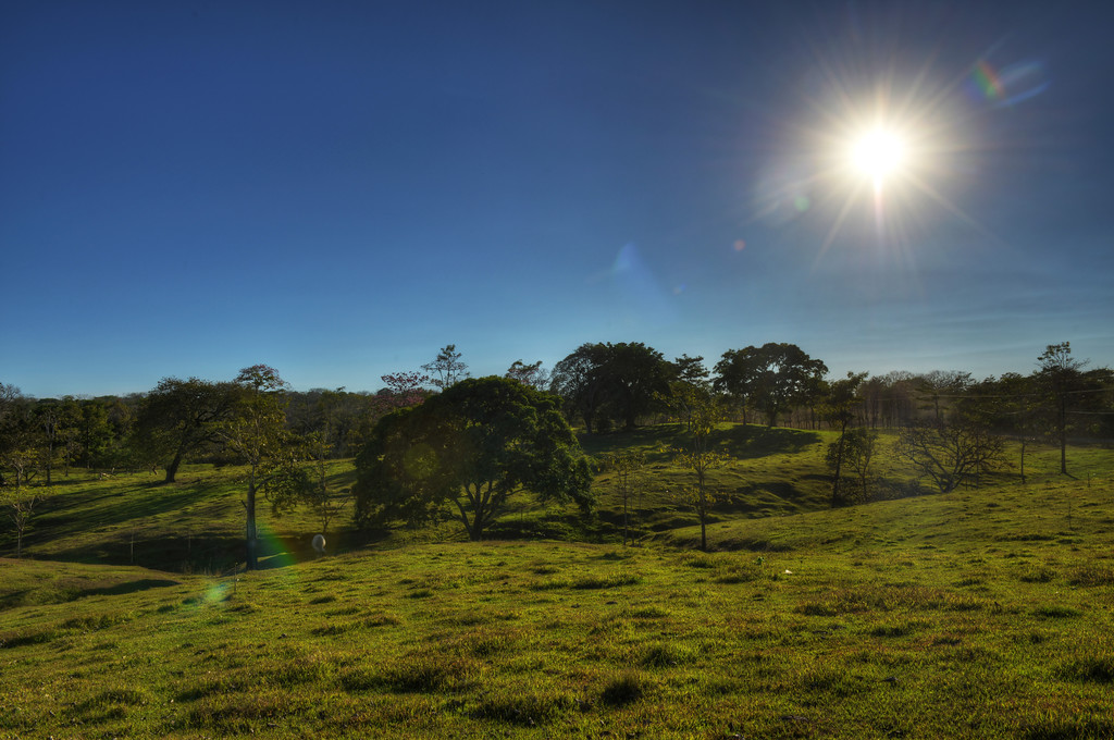 Meadow, Nicoya Peninsula