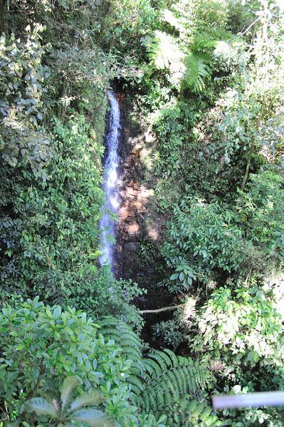 Waterfall from zipline
