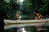 Model Released, Ecoadventure Camp, Canoeing in Tropical Rainforest, Costa Rica