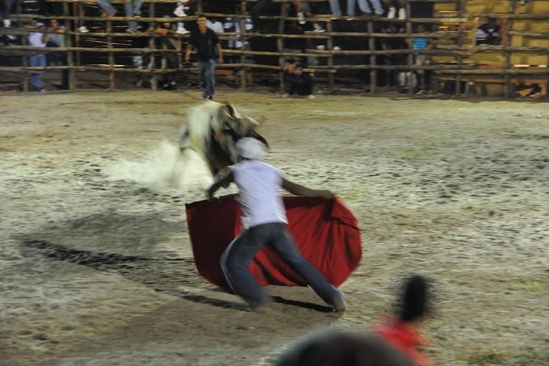 bullfight amateur torero