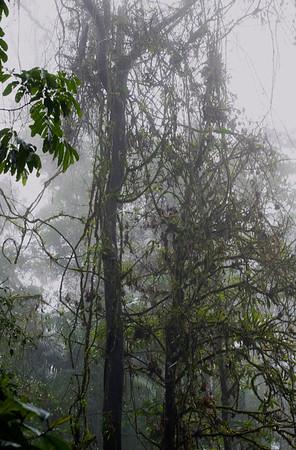 2008 Costa Rica 0055