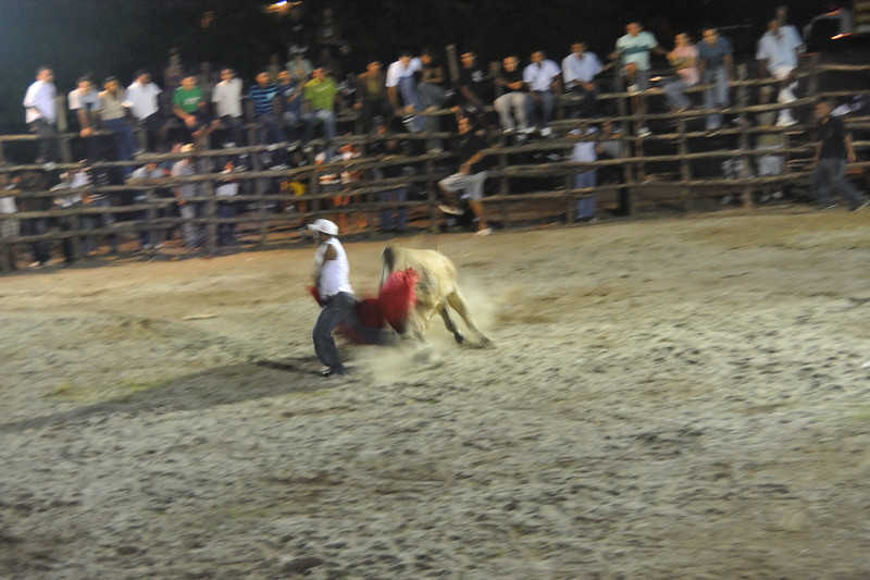 bullfight move quick