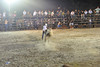 bullfight close chase