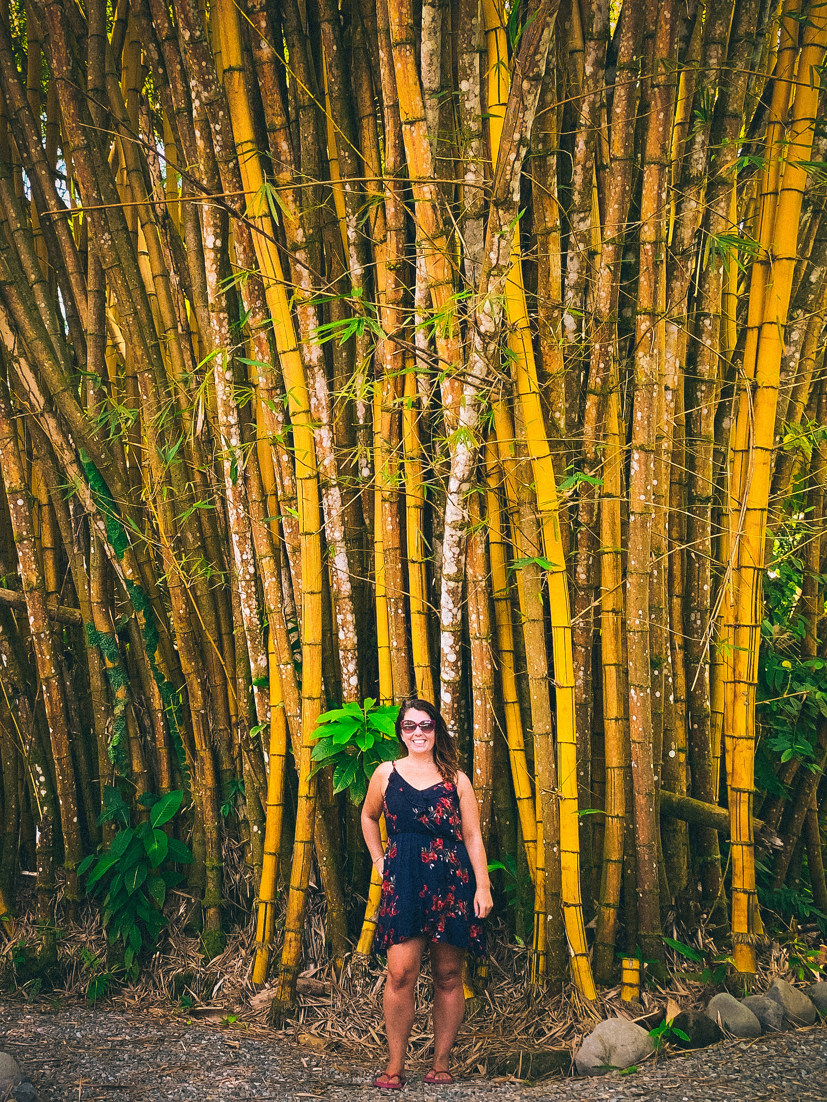 Ayngelina in Costa Rica, with bamboo behind her.