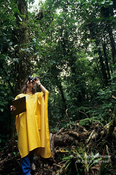 Model Released, Woman Studying the Rain Forest, Rain Forest Vegetation, Lake Coter Eco Lodge, Private Biological Reserve, Northern Pacific Mountains, Arenal Lake Region, Costa Rica, Central America