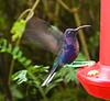 2008 Costa Rica 1198
