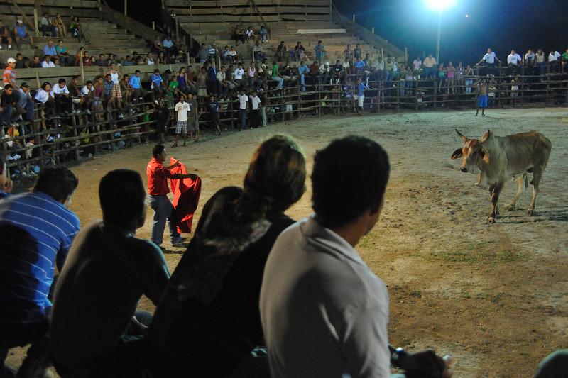 the torero