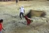 bullfight run