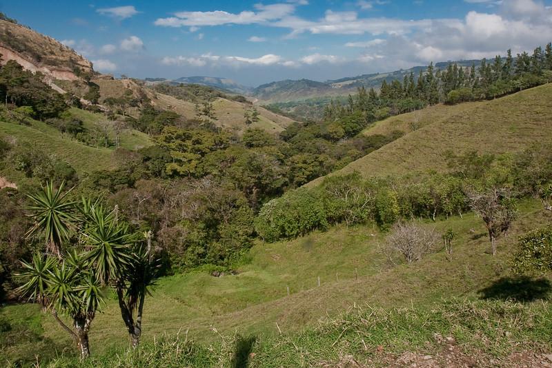 view near Cabeceras de Canas