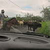 Costa Rican traffic jam on the way to the airport at La Fortuna.