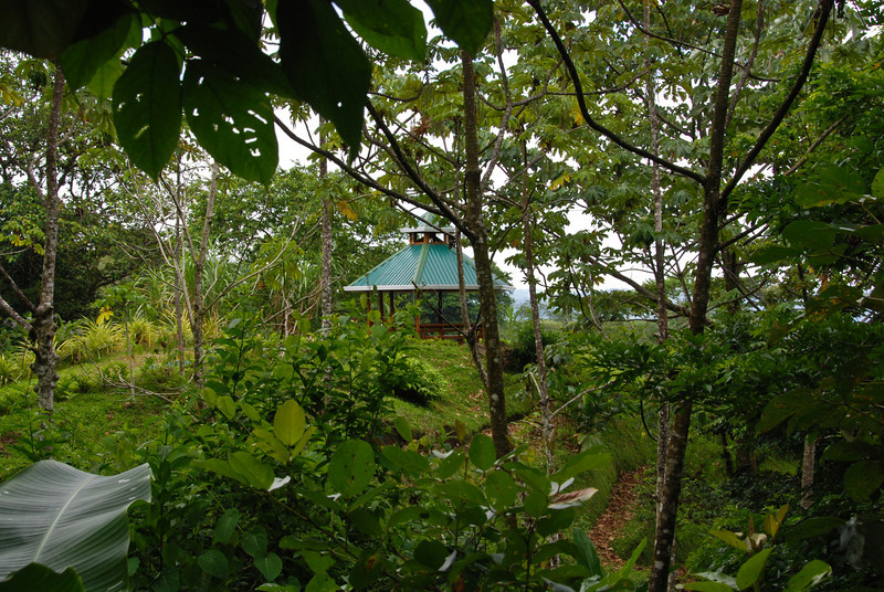 This seemingly secluded gazebo had a great view of the Arenal Volcano.