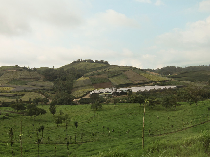 Seen along the ride from San Jose to Arenal.