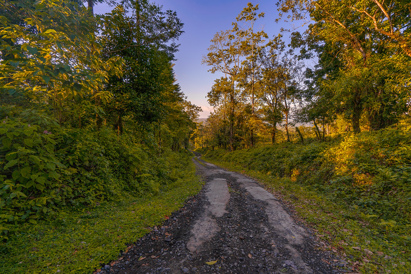 Costa Rican road