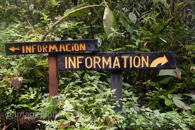 Information?, Monte Verde Cloud Forest, Costa Rica