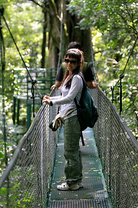 suspension bridge tour in Monteverde