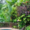 Villa Kristina Maria pool, Uvita CR
