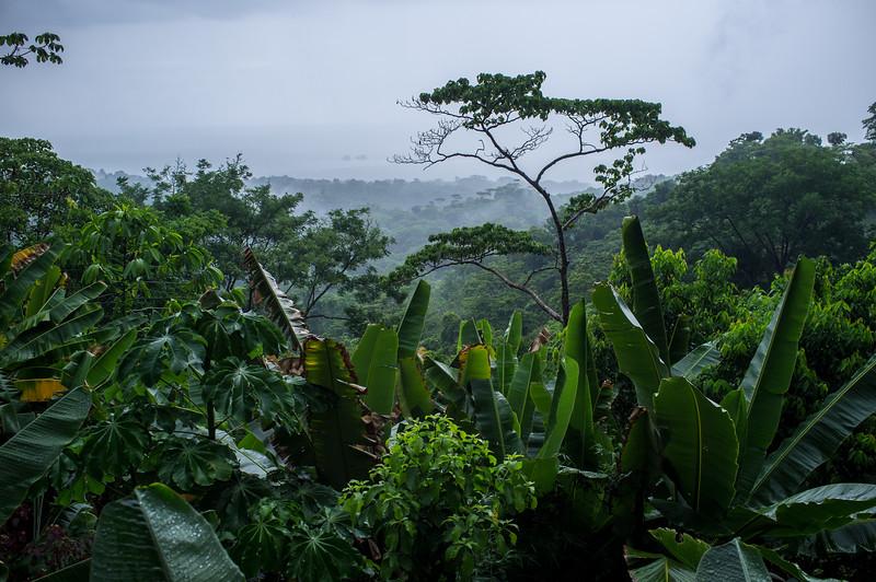 View from Villa Kristina Maria, Uvita CR